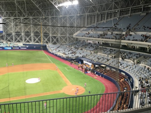 A look at some extended protective nettings in the KBO and NPB | Fan