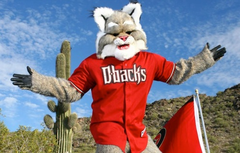 D. Baxter The Bobcat - D'backs