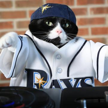 DJ KItty - Rays