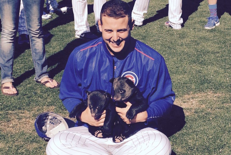 Ok, The World Sucks. Let's Look At Rizzo Holding BabyCubs!