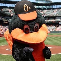 Oriole Bird - Orioles