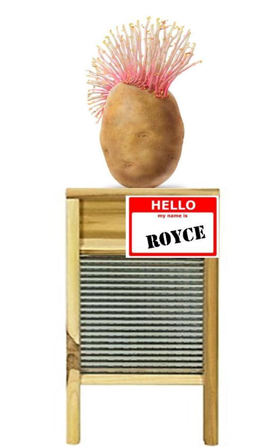 Slurpees with Royce