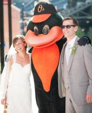 oriole bird wedding