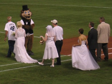 tc bear wedding